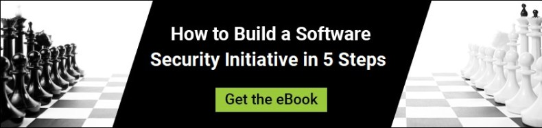 How to Build a Software Security Initiative in 5 Steps