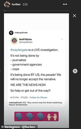 Platform: Rebecca Pfeiffer, who has a fashion and lifestyle blog called Luv Bec, is a follower of QAnon and has touted the Wayfair conspiracy theory on her Instagram Stories
